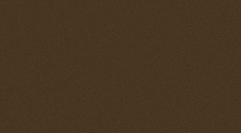 Tubadzin BROWN Brown R.1 59,3×32,7