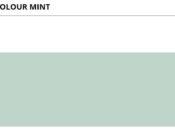 Colour_Mint_74,8x29,8