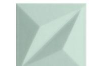 Colour_Mint_STR1_14,8x14,8