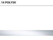 Steel_14_polysk_598x50